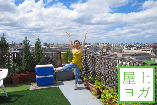 roof_top_new